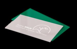 logo Audrey Brun Psychologue création logo identité visuelle identité graphique